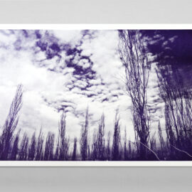 Photo of a forest and clouds printed with purple ink