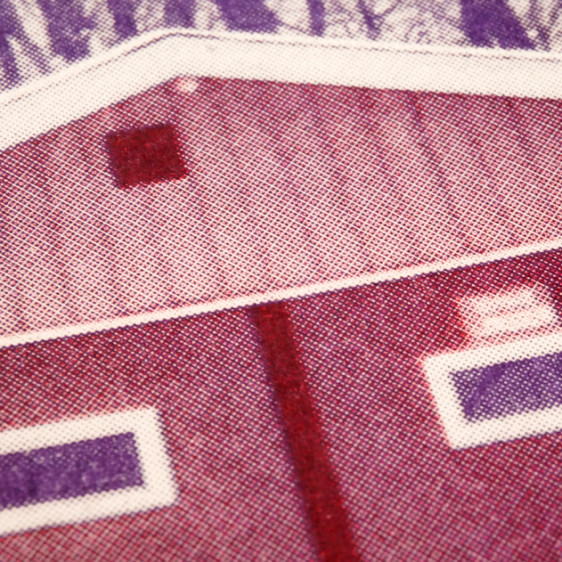 Canadian House Risograph Detail