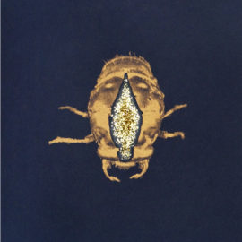 Laura Murray Cicada Risograph Printed, Hand touched with glitter,