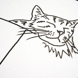 Scott Chasse, inbox me, Risograph Print, OMG webcats detail
